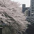 0328_08
