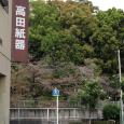 Sakura2018_071